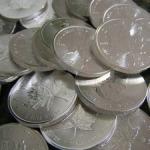 canadian silver.JPG