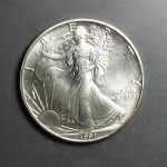 silver eagle front.JPG